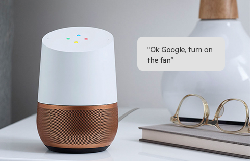 Image result for voice control google home