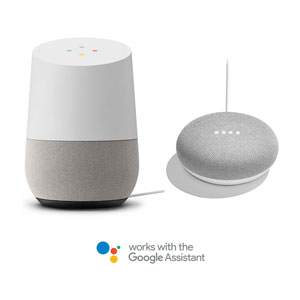 the Google Assistant Callout