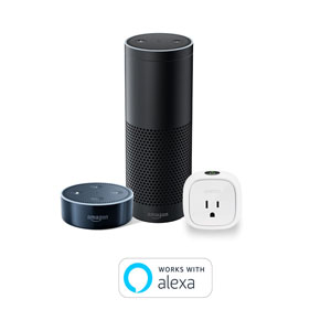 Amazon Alexa Callout