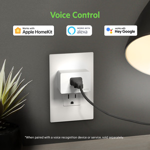 Apple HomeKit, Amazon Alexa and Google Assistant callout above Wemo WiFi Smart Plug